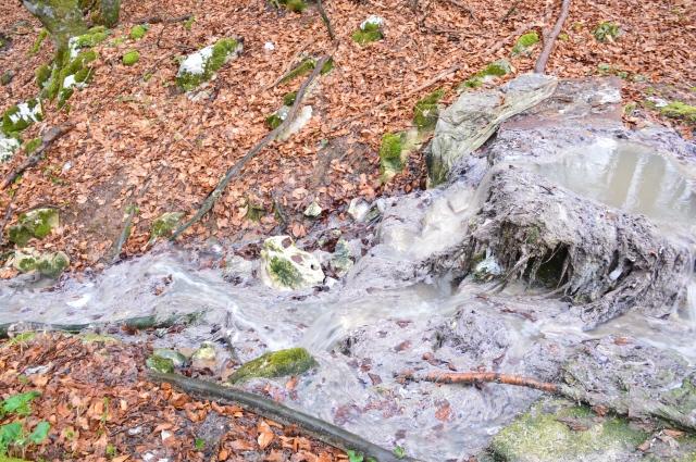 Es ist Frühling in Plitvicer Seen. Hier entspringt die Kloake für den 17. Plitvicer See im Ortsteil Rastovaca- es stinkt bis zum Himmel...UNESCO Nature Heritage in Danger !!!