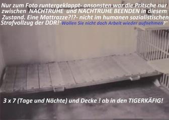 Da erreicht die Zersetzung ihren Höhepunkt iun zig Tausenden von Fällei in DDR Strafvollzug.