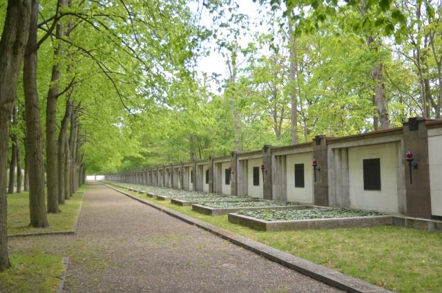 Frühling am Soldatenfriedhof in Schönholzer Heide